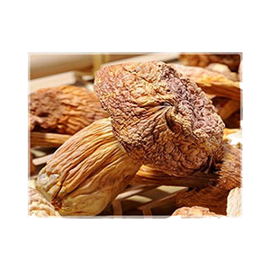 agaricus-blazei-dried-mushroom-330g-amazon