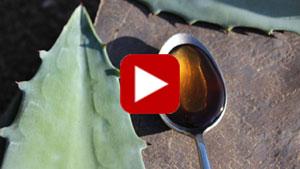agave-syrup-thumbnail