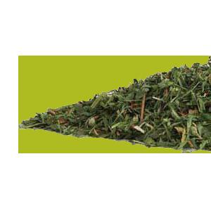 alfalfa-mrh