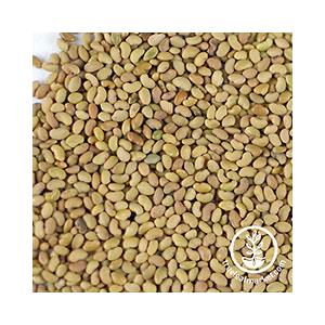 alfalfa-seeds-org-wheatgrass-kits