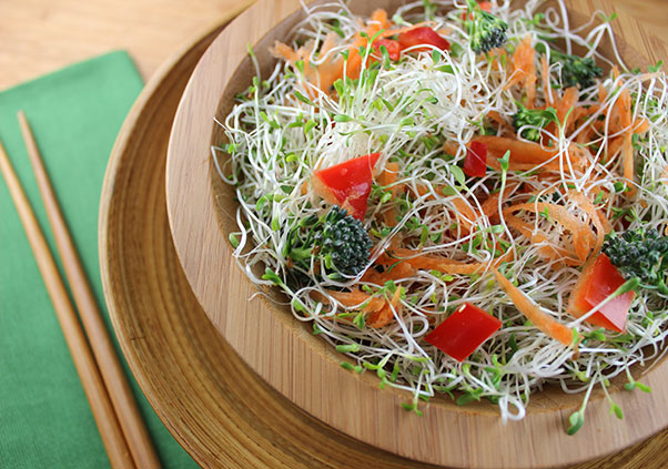 alfalfa-sprouts-nutrition-salad