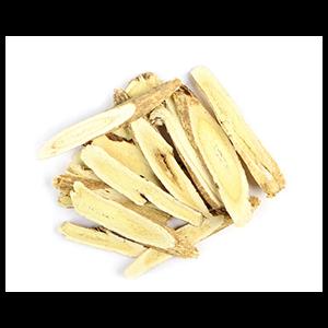astragalus-root-mrh-1