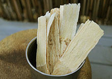 astragalus-root-page