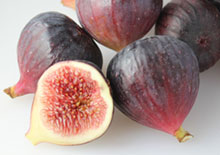 benefits-of-figs-related-pages