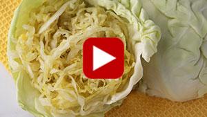 benefits-of-sauerkraut-vid