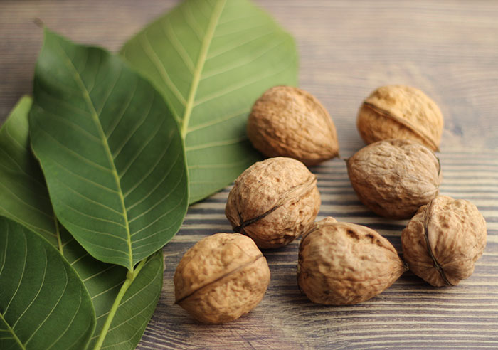 benefits-of-walnuts-leaves-and-whole-walnuts