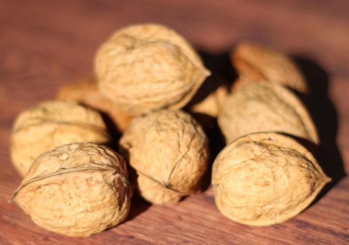 benefits-of-walnuts-unshelled