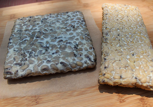black-eyed-pea-vs-soy-tempeh