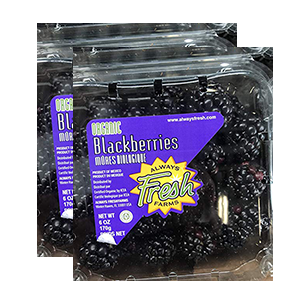 blackberries-fresh-organic