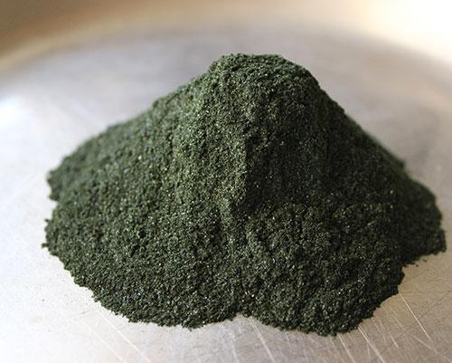 blue-green-algae-aphanizomenon-flos-aquae