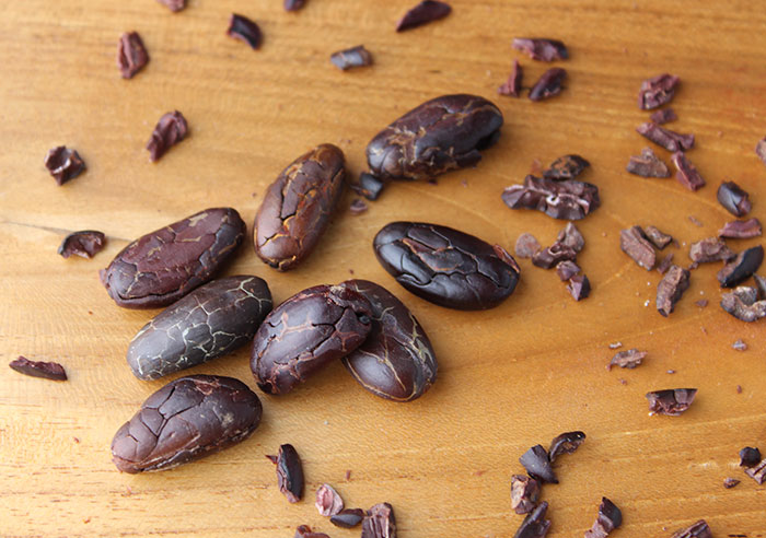 cacao-beans-and-nibs-vs-cocoa