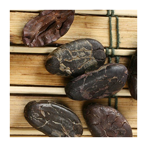 cacao-beans-international-harvest