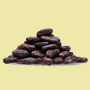 cacao-beans-live-superfoods