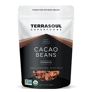 cacao-beans-terrasoul