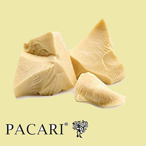 cacao-butter-pacari-amazon