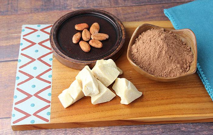 cacao-vs-cocoa-fat-removed