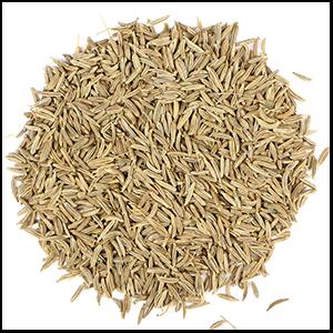 caraway-seed-mrh