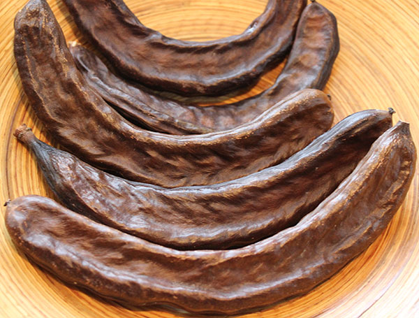 carob-nutrition-health-benefits