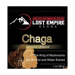chaga-lost-empire