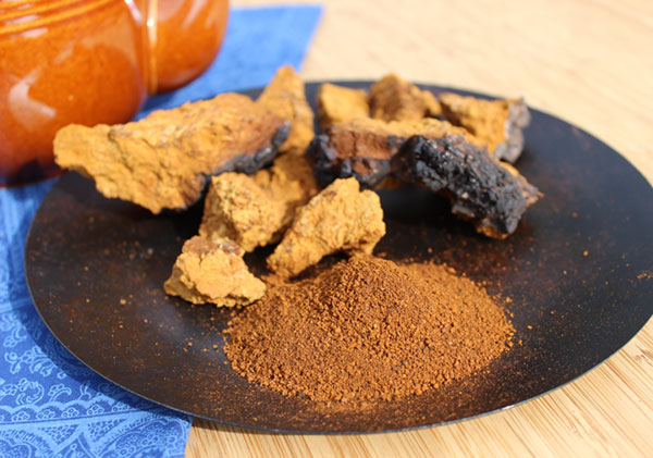 chaga-mushroom-chunks-ground