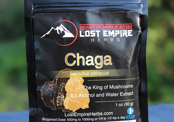 chaga-mushroom-extract-lost-empire-herbs
