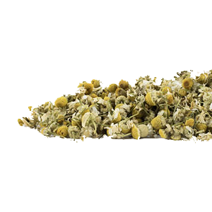 chamomile-flowers-mrh