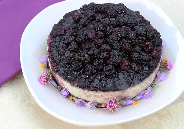 cheesecake-recipe-raw-vegan-blackberry-acai