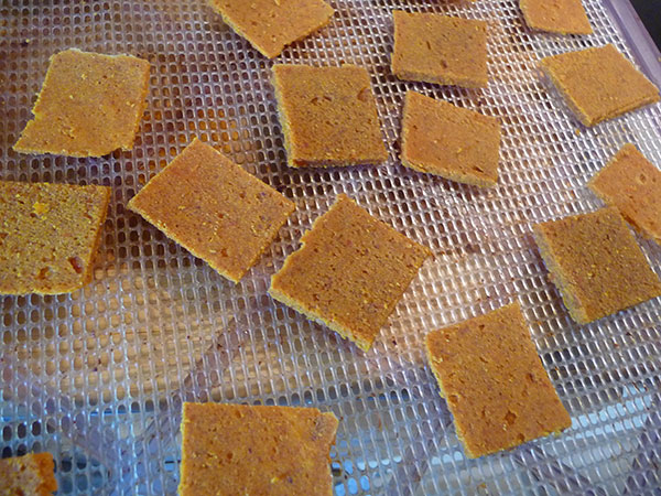 cheez-it-raw-vegan-recipe