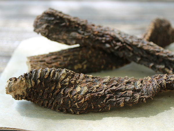 chinese-herbs-cistanche