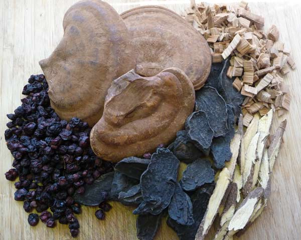 Chinese herbs rebuild with the major tonic herbs