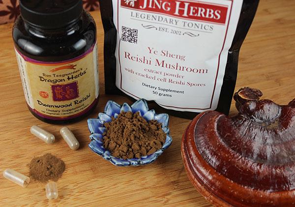 chocolate-cake-recipe-using-reishi-mushroom