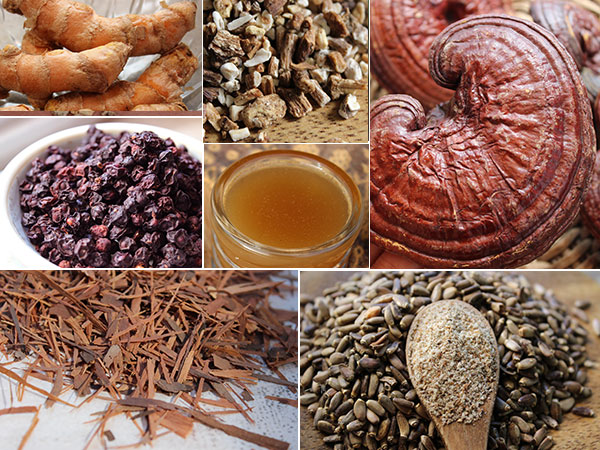 cleansing-herbs-pics-collage