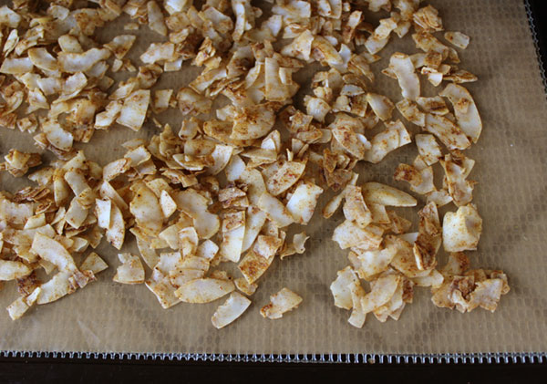 coconut-bacon-bits-before-dehydrating