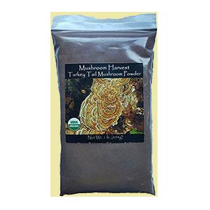coriolus-mushroom-harvest-amazon