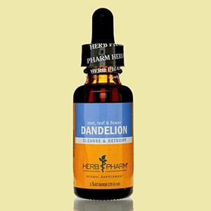 dandelion-extract-1-herbph-live