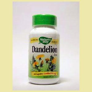 dandelion-root-natures-way-house