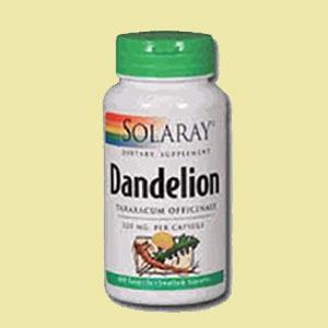 dandelion-solaray-house