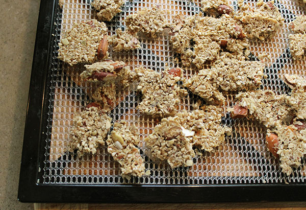 dehydrated-coconut-granola