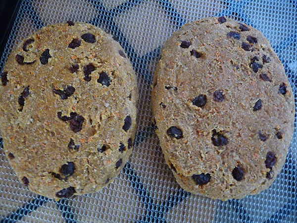 dehydrated-essene-bread