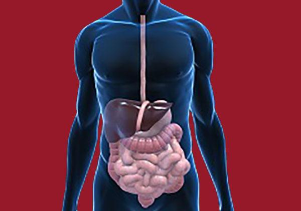 digestion-healthy-diet-plan