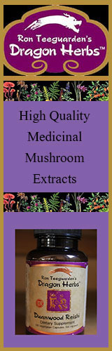 dragon-herbs-medicinal-mushrooms