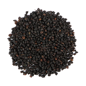 elderberry-dried-mrh