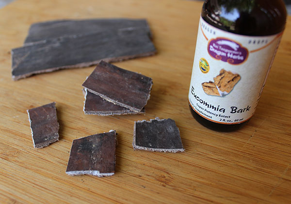 eucommia-bark-benefits-liquid-extract