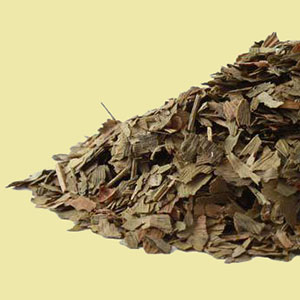 ginkgo-leaf-mrh