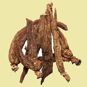 ginseng-red-plumdragon-herbs