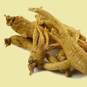 ginseng-whole-root-mrh