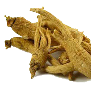 ginseng-whole-root-mrh
