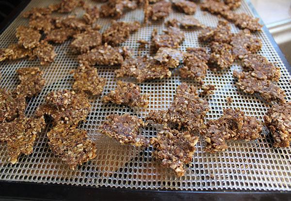 granola-recipe-raw-vegan