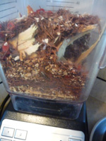 herbal-tea-recipes-16