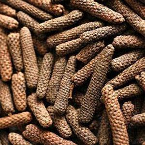 herbs-for-energy-long-pepper